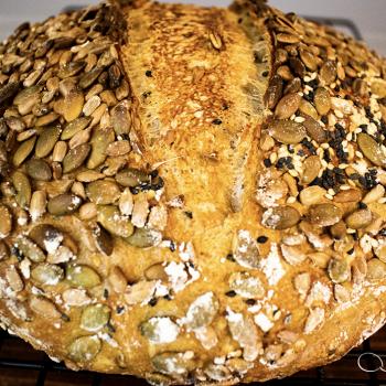 A Knead to Bake SOURDOUGH FOCCACIA second overview