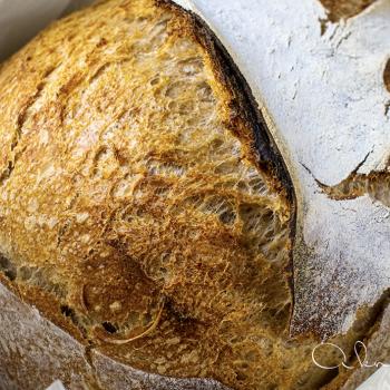 A Knead to Bake SOURDOUGH MILK BREAD second slice
