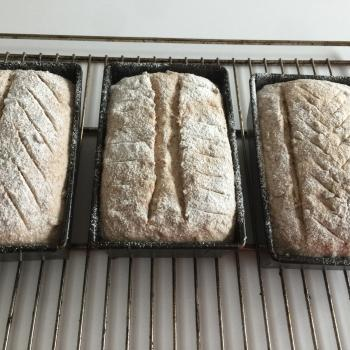 Barbara Whole wheat breads first slice