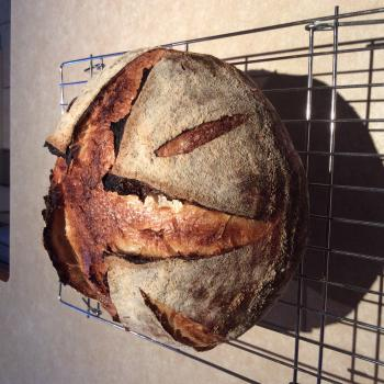 Connie Sourdough bread first overview