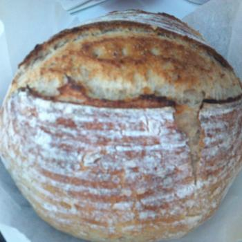 ID Bubbles Pizza crust and bread dough second overview