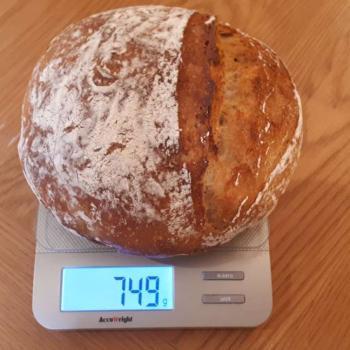 NDG basic sourdough bread first overview