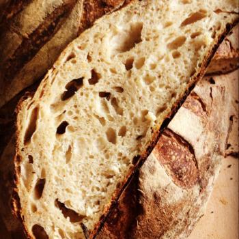 quarantine Bread second overview