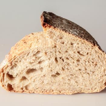 REBOLA MMC PAN SARRACENO / SARRACENO BREAD second overview