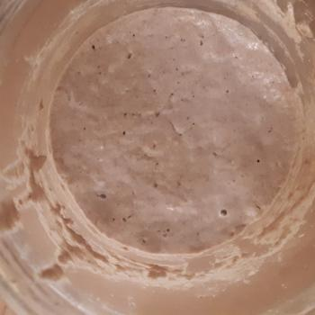NDG jar shot